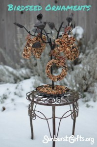 Birdseed Ornaments for Bird Lovers Gift Idea