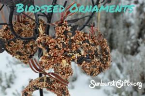 Birdseed Ornaments for Bird Lovers Gift Idea