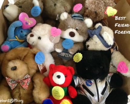 Bears-Best-Friend-Forever-gift-idea-sunburst-gifts