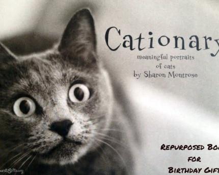 book-repurposed-birthday-thoughtful-gift-idea