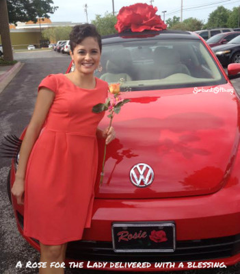 rose-with-blessing-delivery-and-rosie-vw-thoughtful-gift-idea