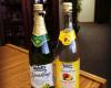 celebrate-sparkling-juice-mocktails-gift