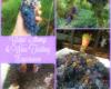 grape-stomp-wine-tasting-vineyard-experience