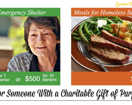 charitable-gift-purpose-donation-thoughtful-gift