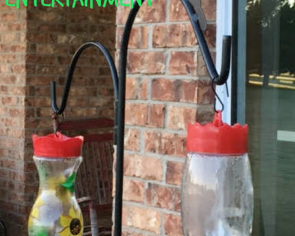 hummingbird-feeder-backyard-entertainment-thoughtful-gift-idea