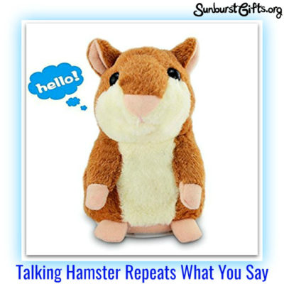 talking-hamster-repeats-what-you-say-thoughtful-gift-idea