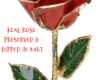 rose-preserved-dipped-24kt-thoughtful-gift-idea (2)